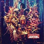 16 Mars 2014 - RED FANG + LORD DYING + THE SHRINE - Paris - Le Divan Du Monde - Stoner
